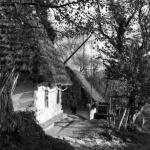 Chaty Łemków, Bereźnica Niżna k. Soliny, lata 1939 - 1945, fot. Narodowe Archiwum Cyfrowe