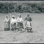 Sianokosy, Komańcza,  lata 1930-1939, fot. Henryk Poddębski, źródło: Biblioteka Narodowa / Polona